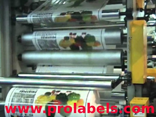 ProLabels- Manufacturer of self adhesive labels in Bangladesh in  listed under Services - Other