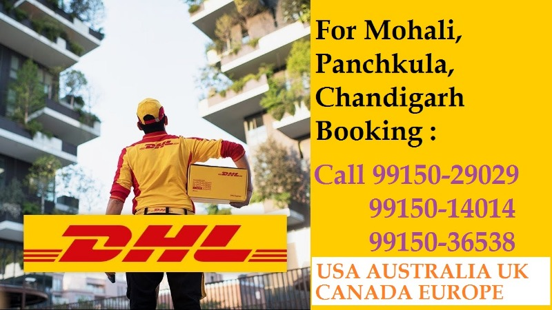 Shipping Service from Ludhiana Punjab to Worldwide Call 9915001700 in LUDHIANA