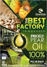 ZINEGLOB: PRODUCER, WHOLESALER AND EXPORTER OF PRICKLY PEAR OIL in  listed under Lifestyle - Wholesale / Bulk
