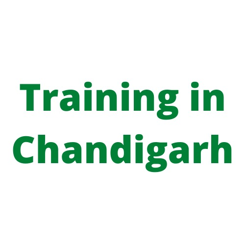 Digital Marketing Training in Chandigarh in  listed under Education - Professional Courses