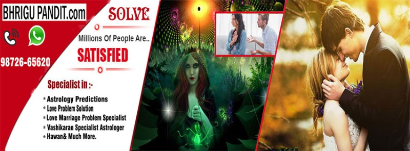 top astrologer in usa canada india in Jalandhar listed under Services - Announcements