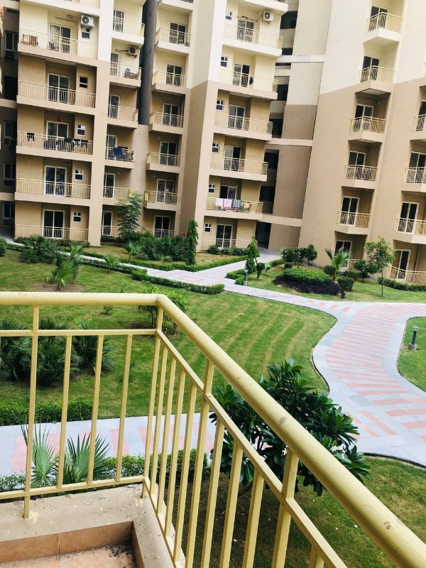 3 BHK for rent in Paramount Emotions in  listed under Real Estate - Appartments for Rent