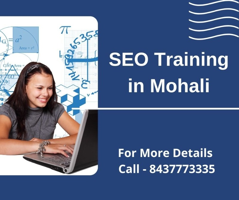 SEO Training in Mohali in  listed under Education - Professional Courses