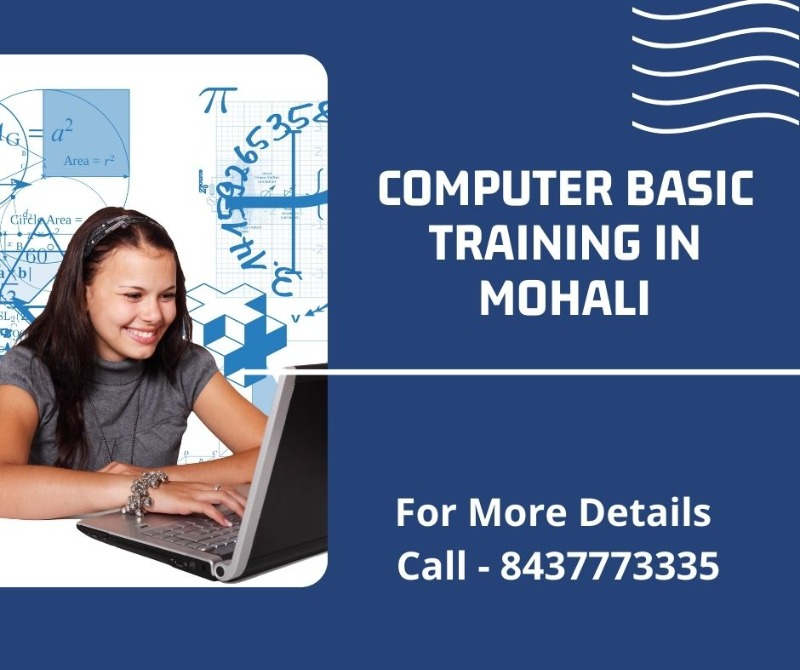 Computer Basic Course in Mohali in  listed under Education - Professional Courses
