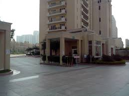 The Palm Springs 3 bhk apartment for rent in sector 54 Gurgaon