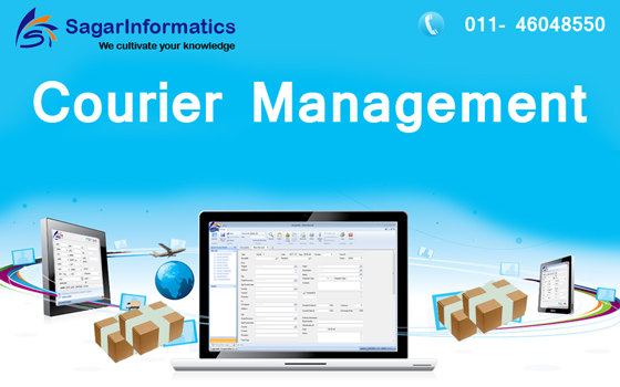 Best Domestic Courier Management Company Delhi NCR